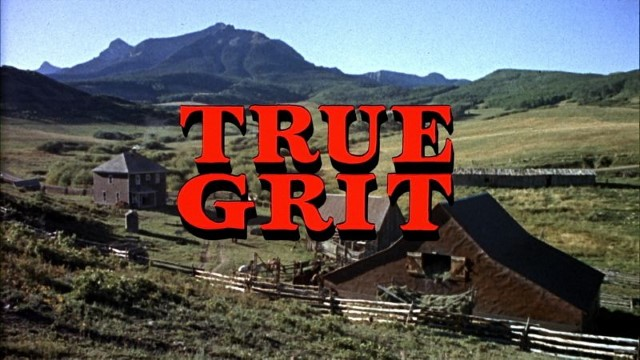 true grit (Custom).jpg