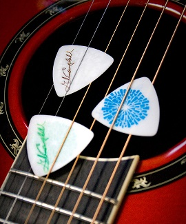 GC Guitar Picks for sale on official website.jpg